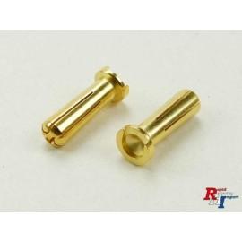 5mm goudstekker voor hardcase 2st.