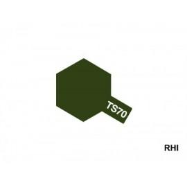 85070, TS-70 GSDF Olive Drab 100ml Spray